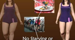Eating habits to lose weight and gain muscle